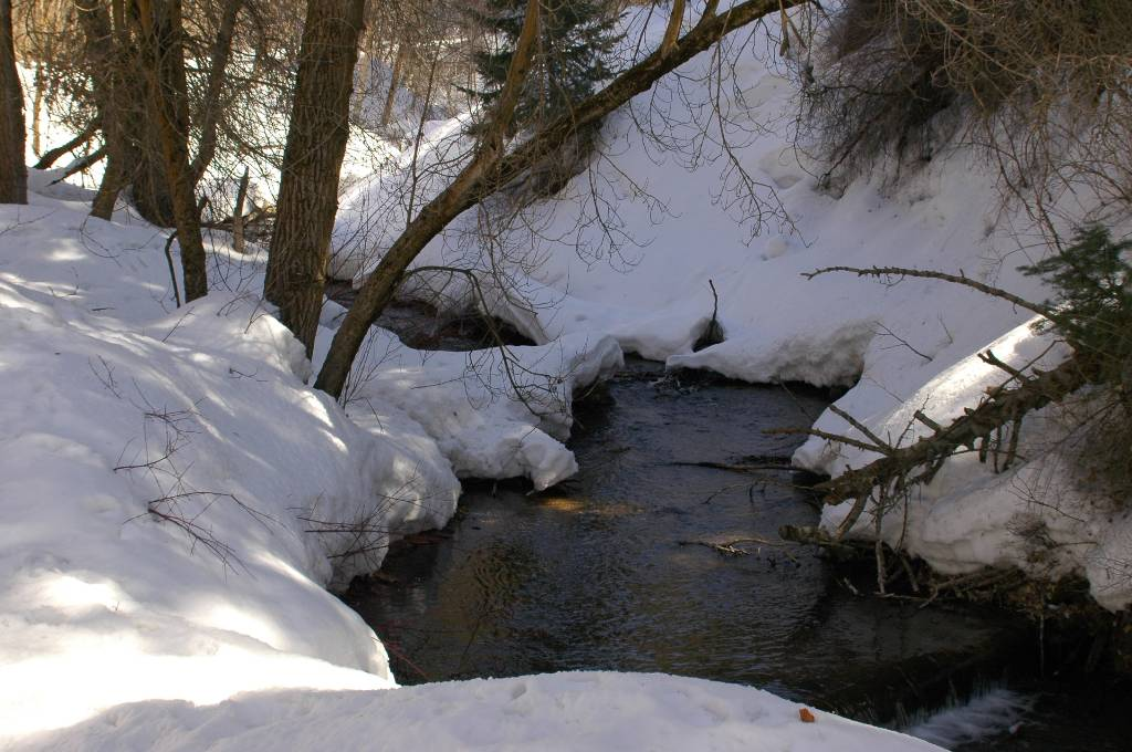 Mill Creek Thaws