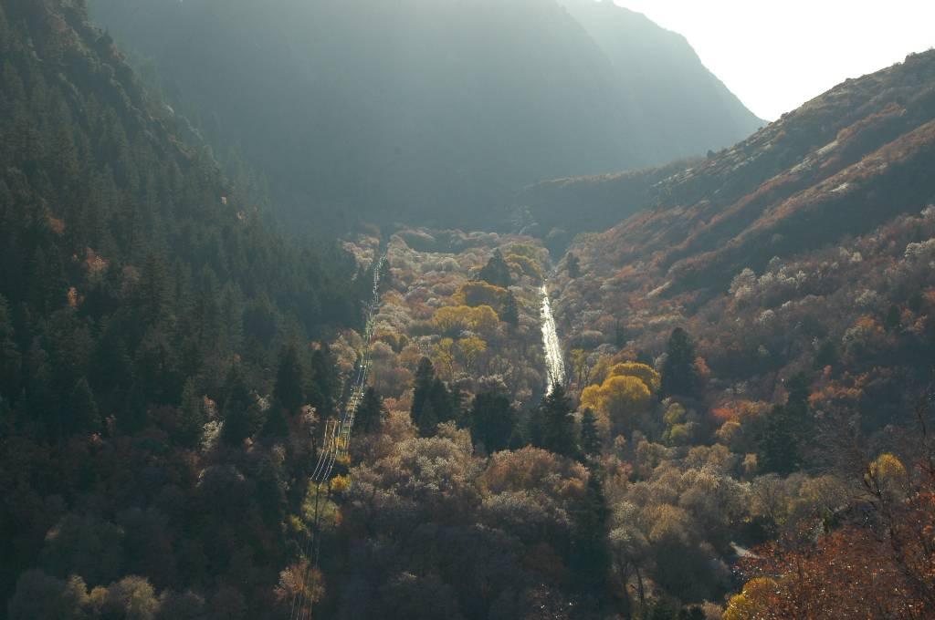 Millcreek Canyon