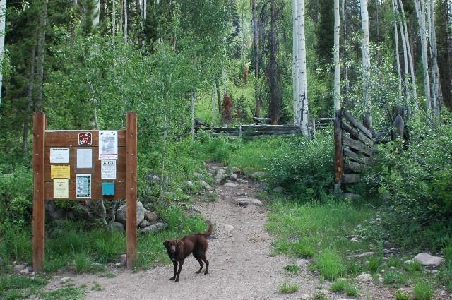 Middle Fork Trailhead