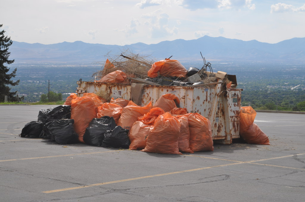 Wasatch Cleanup